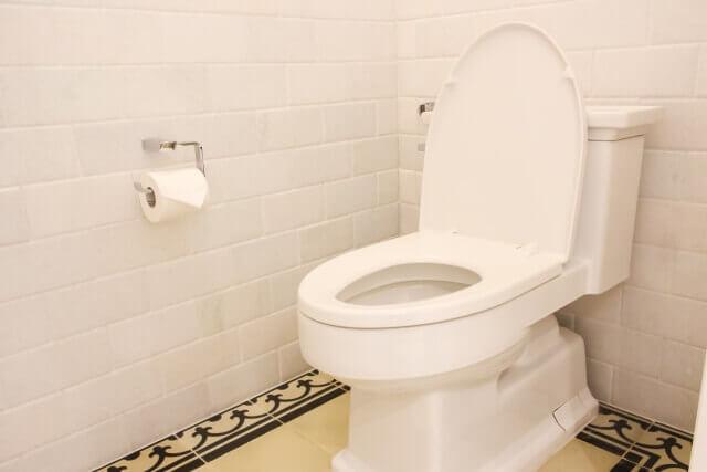 公園のトイレ掃除する方法
